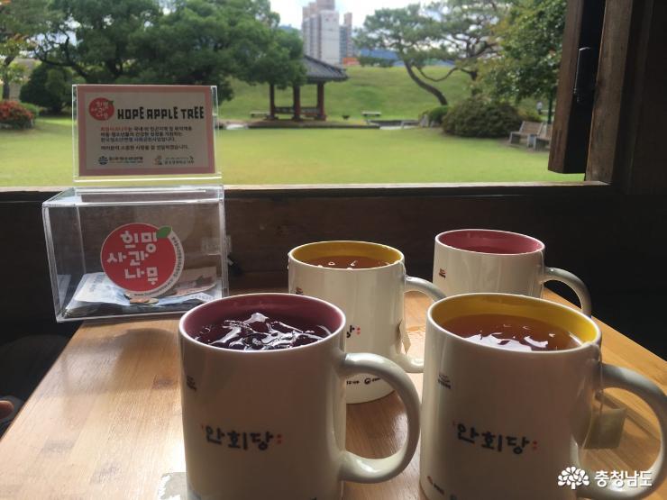 홍주성의 안회당에서 시원한 전통차 한 잔 어떠세요? 4