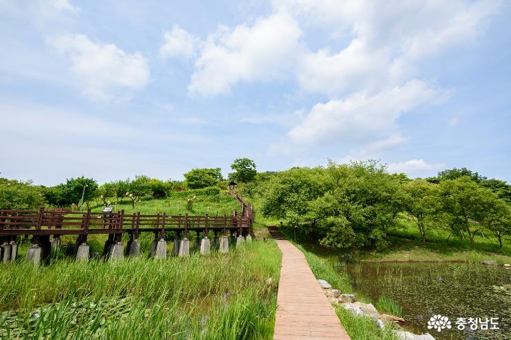 영인산 생태공원의 아름다운 풍경 사진