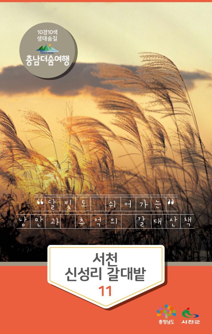 충남더숨여행-서천 신성리갈대밭