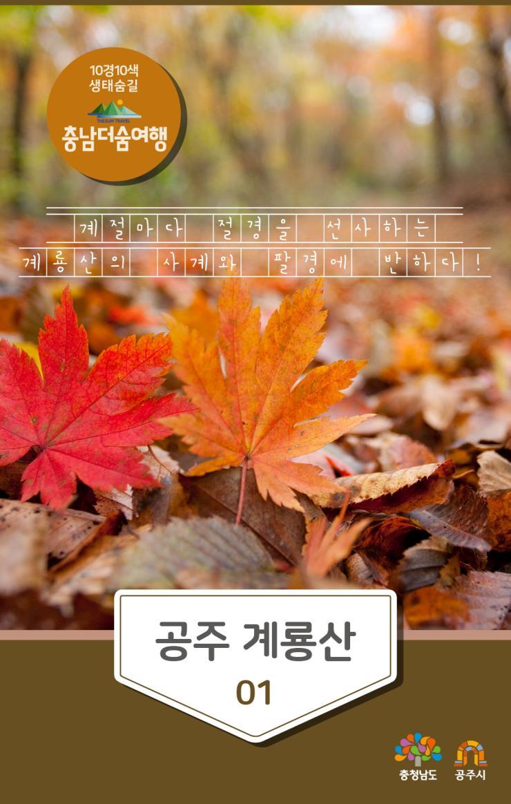 충남더숨여행-공주 계룡산