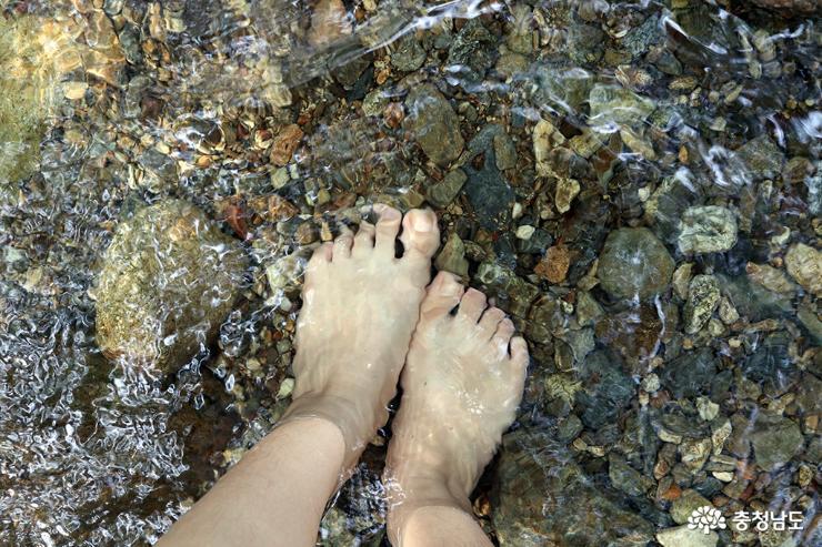 더운 여름 시원한 충남 아산 강당골계곡으로 피서 가요 사진