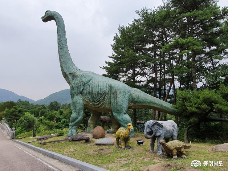 계룡산 자락에 위치하고 있는 박물관 2