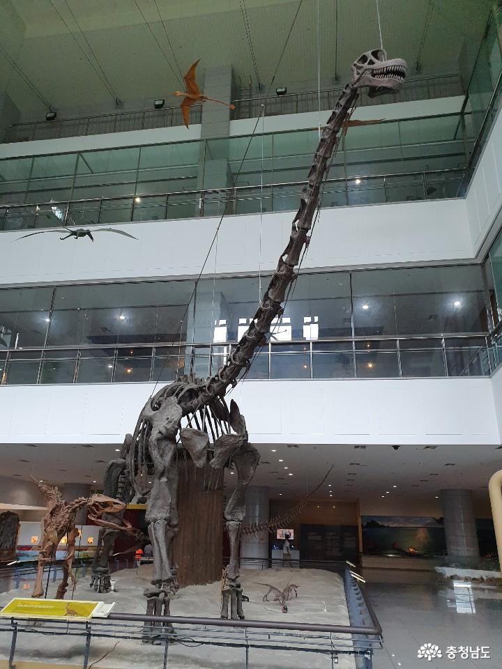 계룡산 자락에 위치하고 있는 박물관 4
