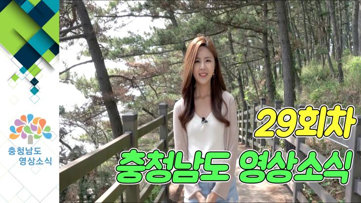 [종합]충청남도 영상소식 29회차