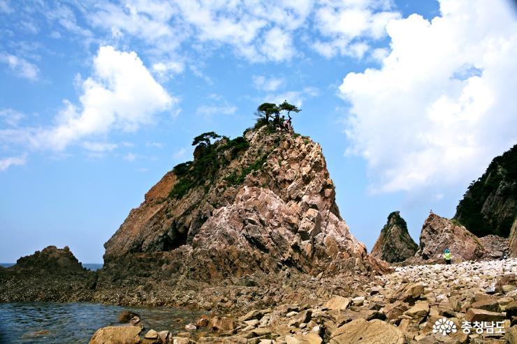 [통통충남]여름산행 서산 황금산 해안가 트레킹