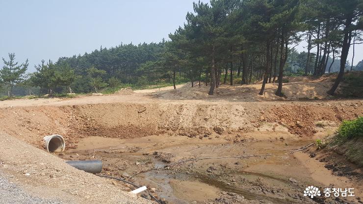 사목해변 불법 '천지'