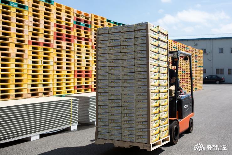 충남의 우수한 농·식품들 세계 각국으로 수출 1