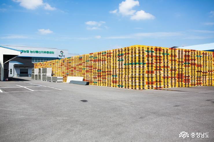 충남의 우수한 농·식품들 세계 각국으로 수출 6