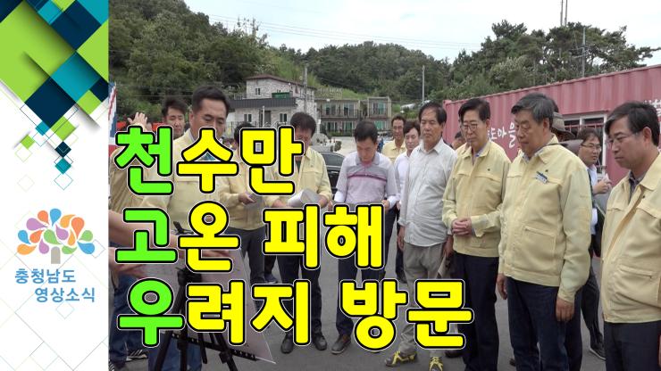 [NEWS]천수만 고온 피해 우려지 방문