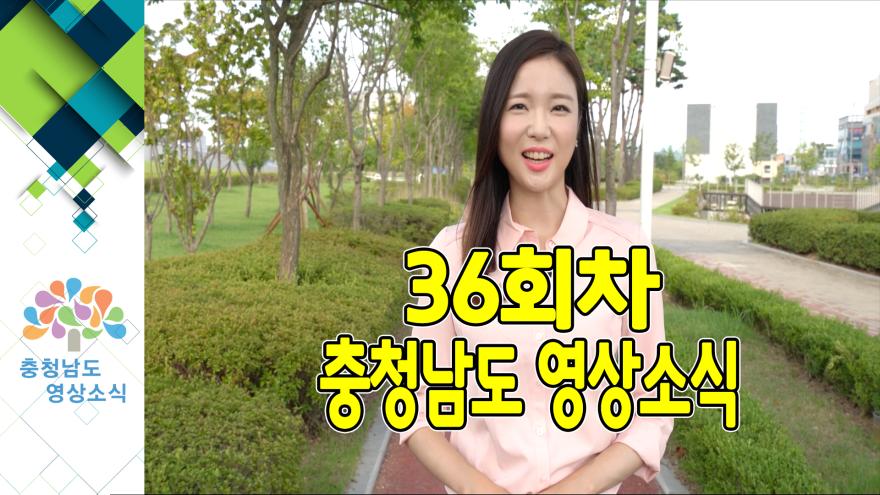 [종합]충청남도 영상소식 36회차