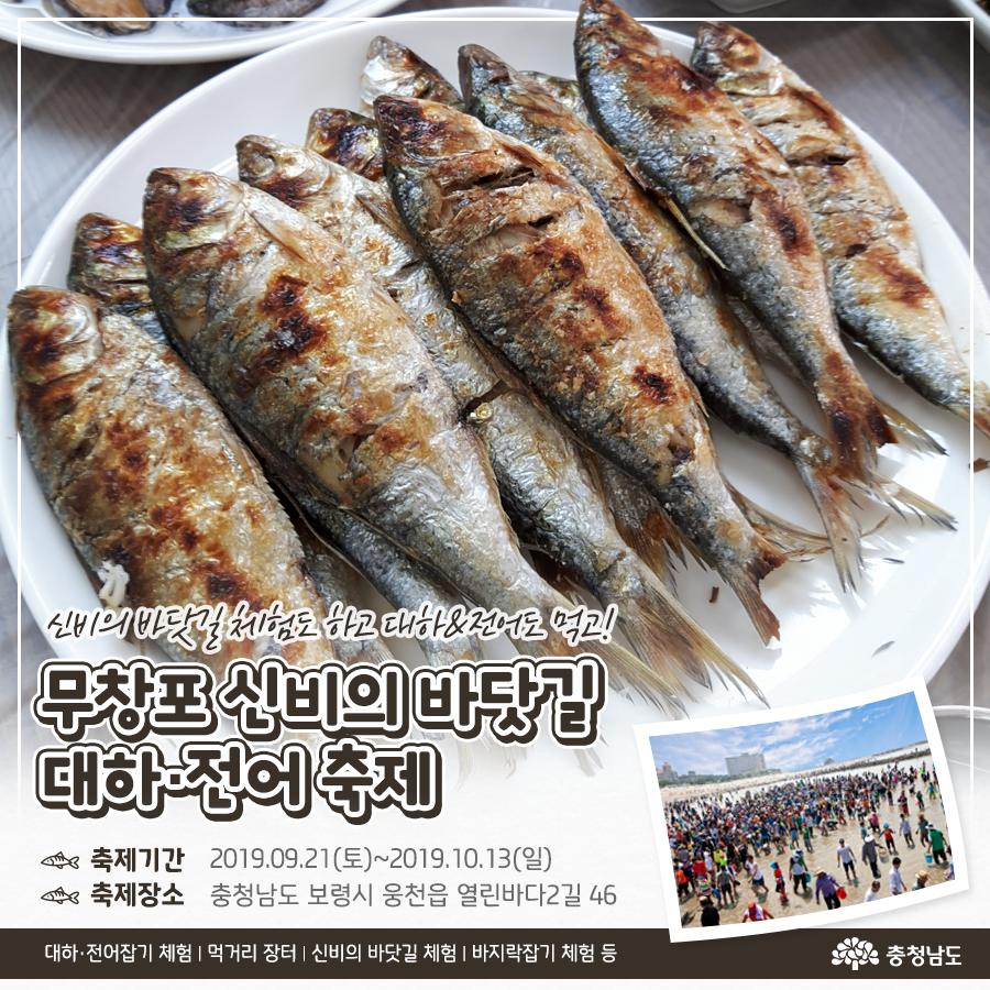 무창포 신비의 바닷길 대하·전어 축제