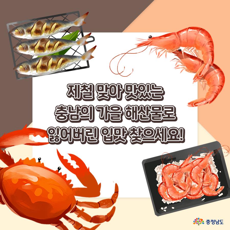 충남의 가을 해산물로 잃어버린 입맛 찾으세요!