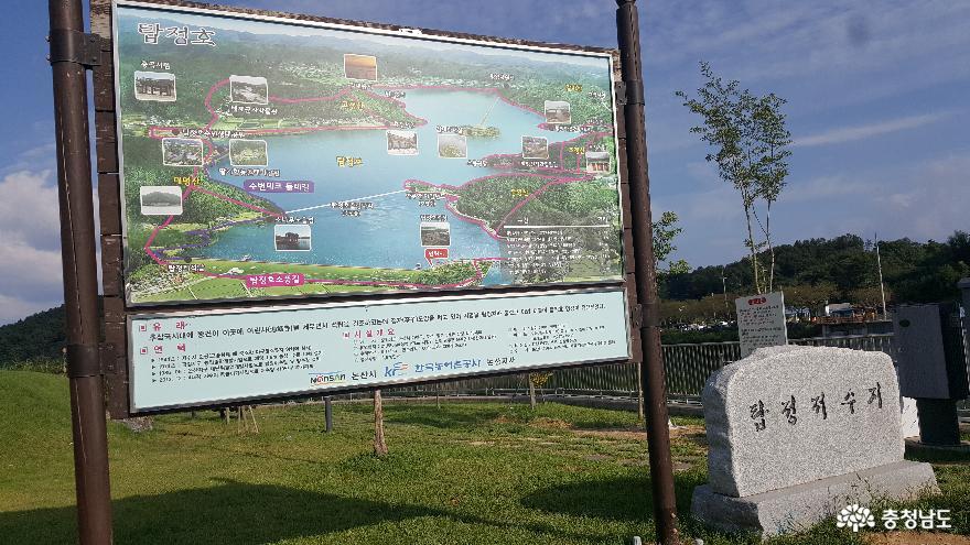 논산 탑정호의 초가을 풍경