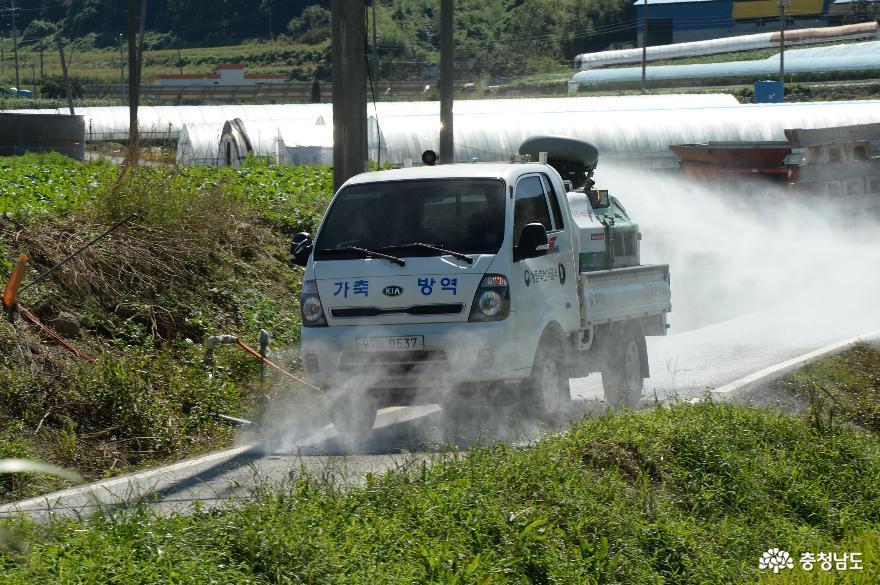축산1번지 홍성군, 아프리카돼지열병 맞서 '총력전' 펼친다!