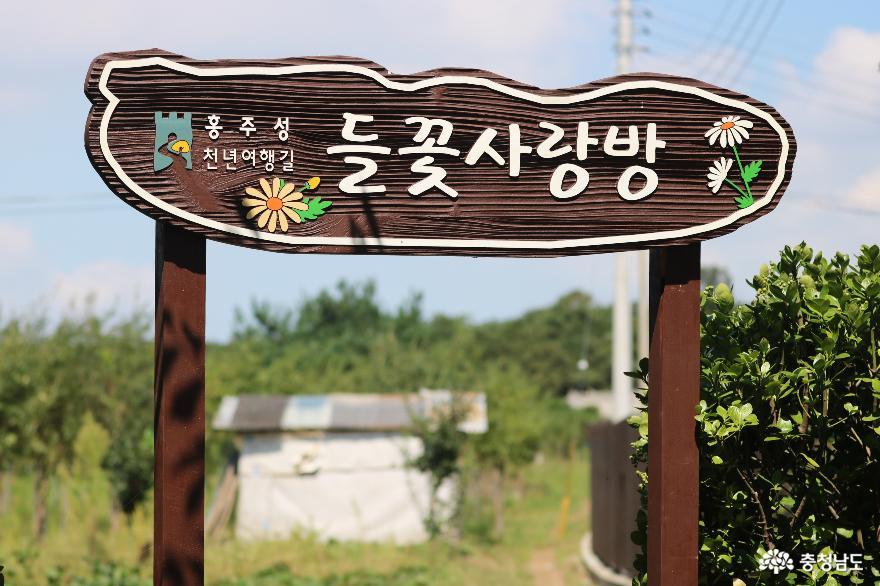 역사가 깃든 향기로운 들꽃길 따라 걷는 힐링 여행 2