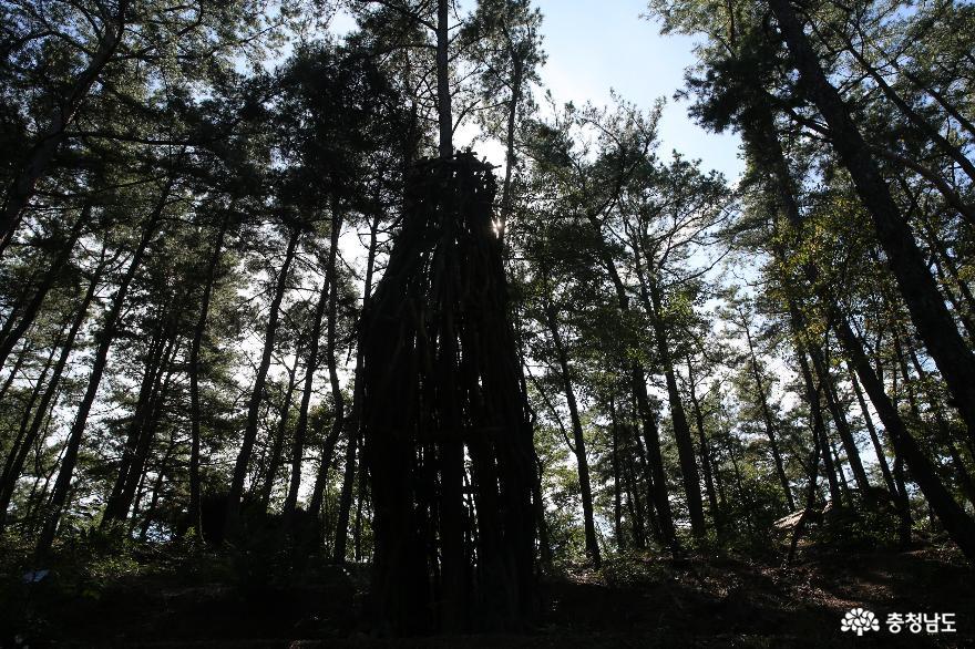 가을에 예술을 만날 수 있는 금강자연비엔날레 8