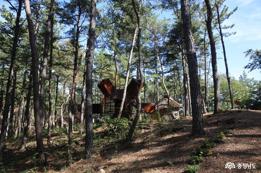 가을에 예술을 만날 수 있는 금강자연비엔날레 9