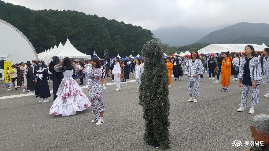 2019 계룡세계軍문화축제 11