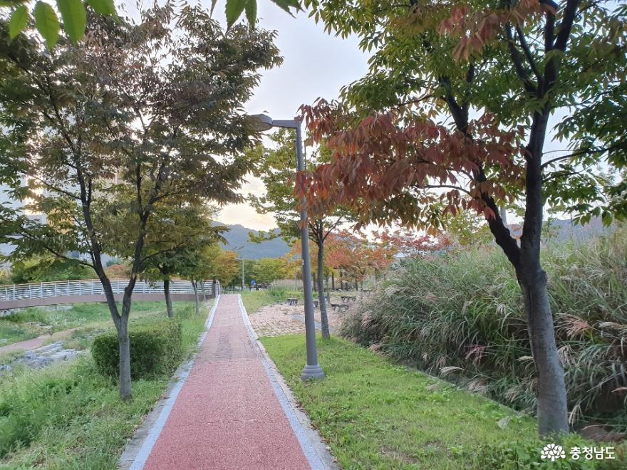 내포에 다가온 가을 향기
