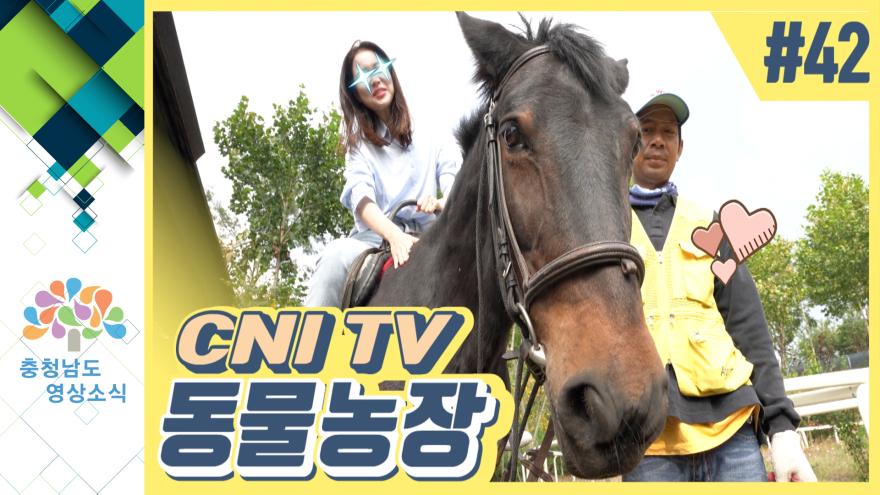 [VCR] CNI TV 동물농장