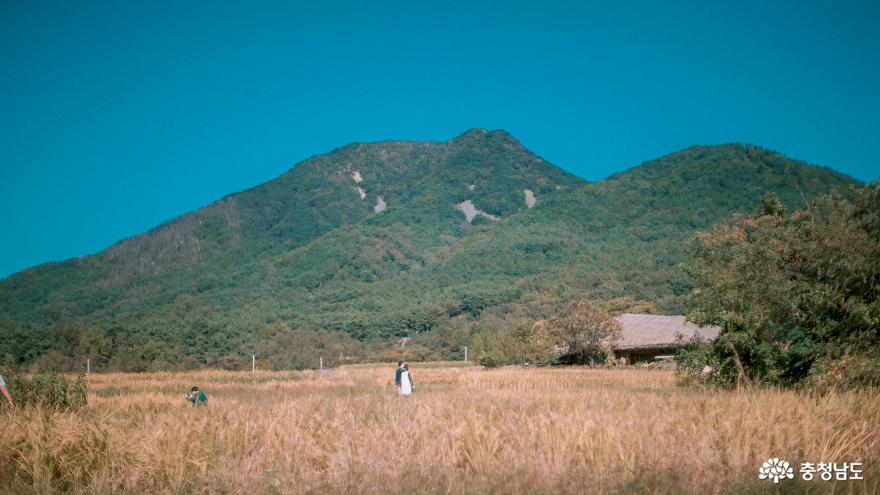 정겨운 가을풍경을 느끼러 가요, 아산 '외암민속마을' 8