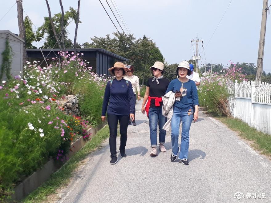 대흥슬로시티 꼬부랑 산책길 2