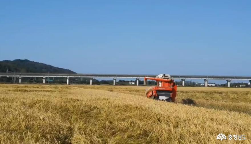 서천 친환경 쌀 서래야를 소개합니다.