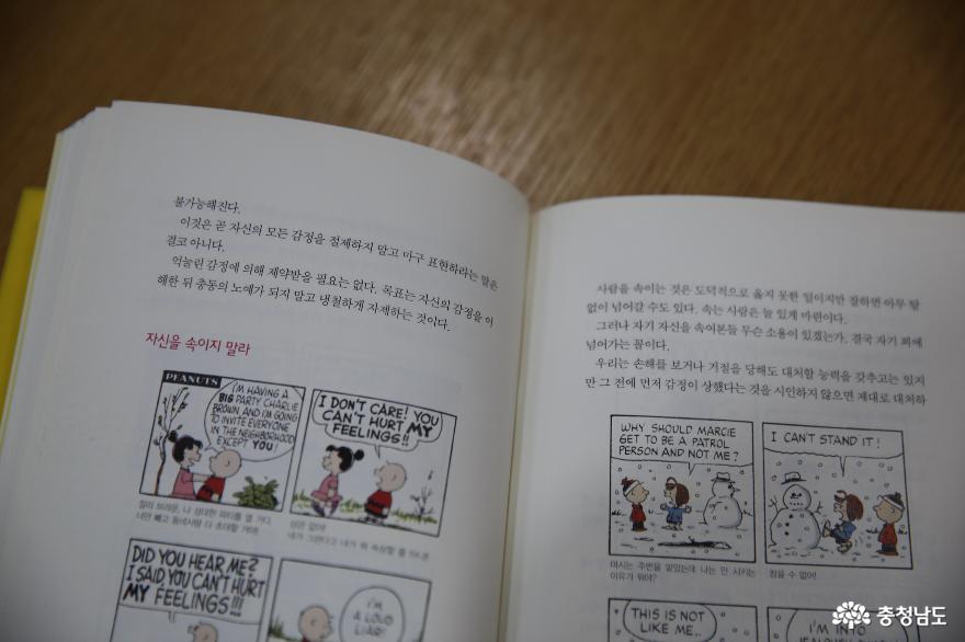 쉬면서 책도 읽을 수 있는 금산 인삼휴게소 7
