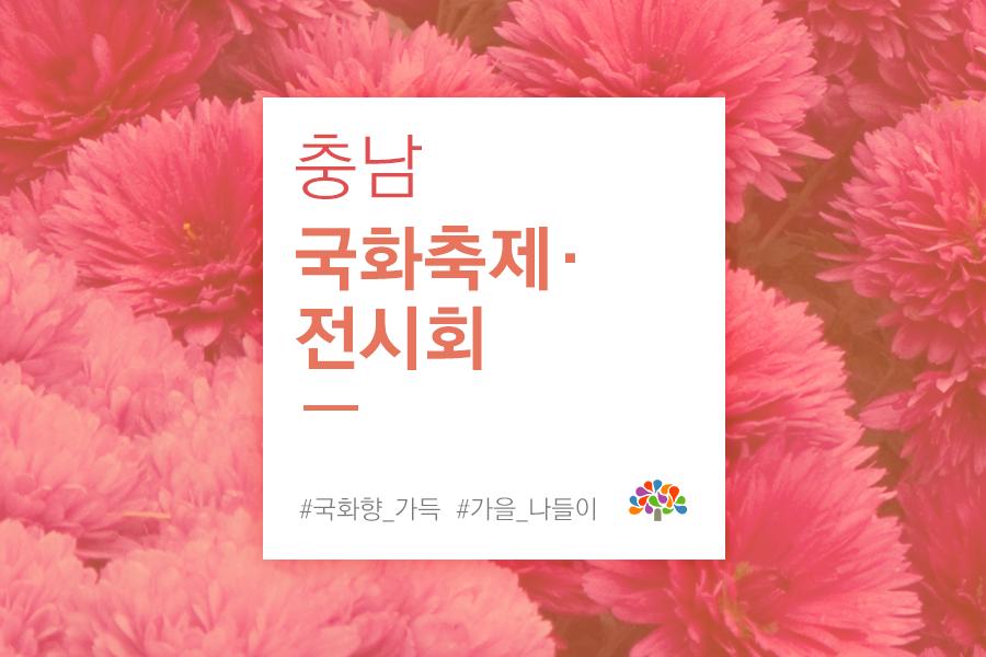 충남 국화축제·전시회
