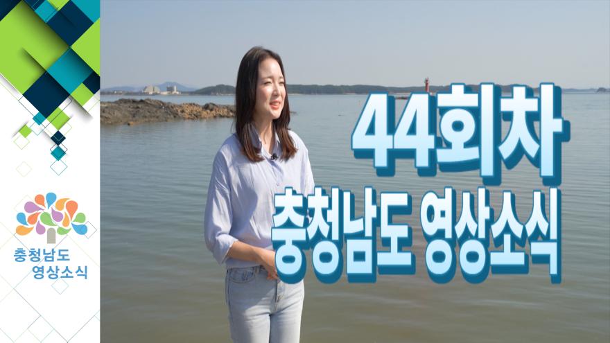 [종합]충청남도 영상소식 44회차