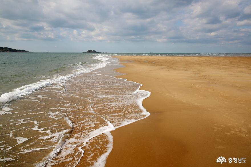 태안군, 거대한 모래섬 '장안사퇴'의 비경 적극 홍보!