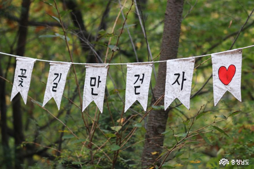 오색빛깔 가을 단풍과 해질녁 노을풍경이 예쁜  영인산 1