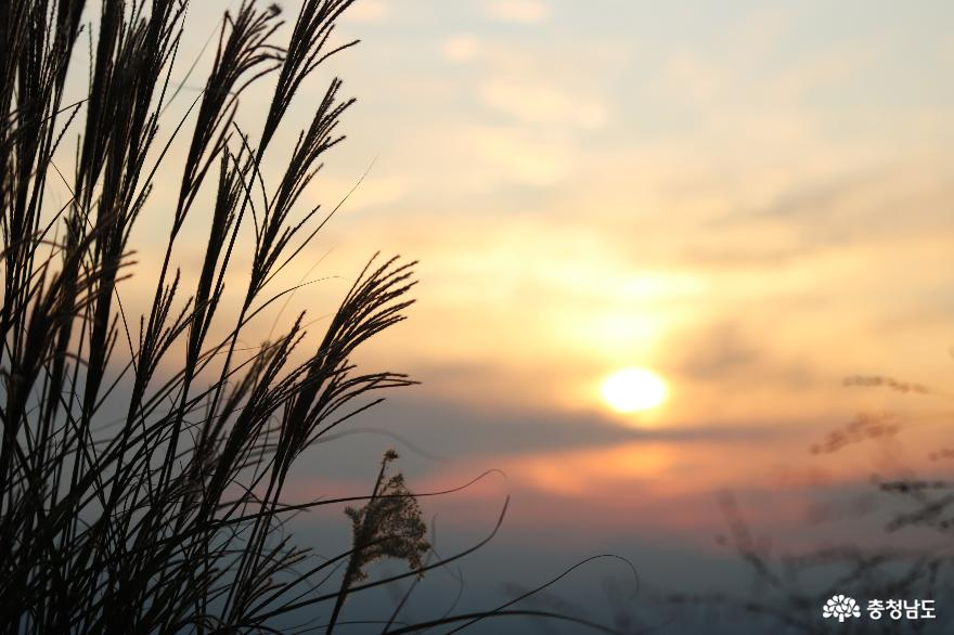 오색빛깔 가을 단풍과 해질녁 노을풍경이 예쁜  영인산 18