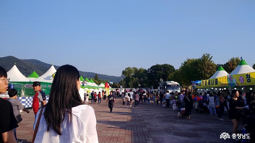 신명나는 춤으로 하나되었던 세계인의 축제  '2019 천안흥타령춤축제' 34