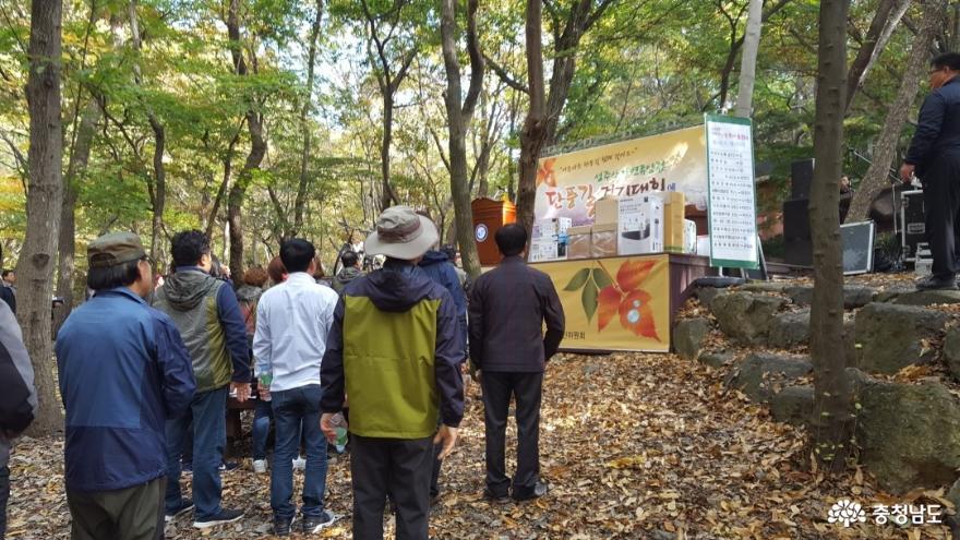 관광객을 보듬는 성주산 단풍길 걷기대회 1