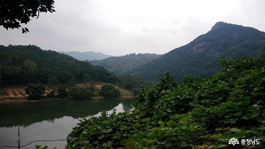 적벽강 비밀의 섬 <금산 방우리 마을> 2