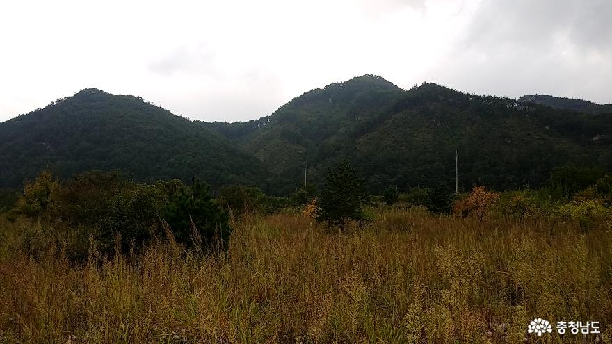 적벽강 비밀의 섬 <금산 방우리 마을> 17