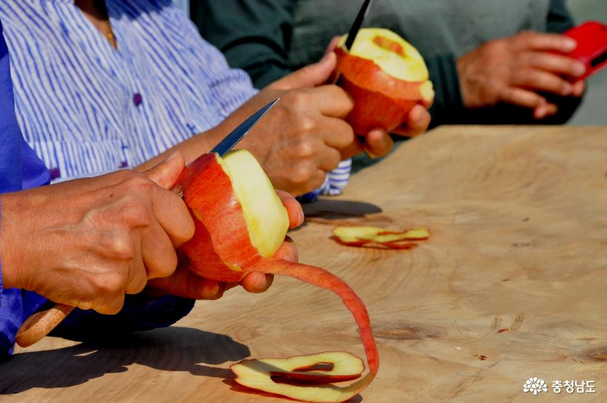사과껍질 길게 깎기대회
