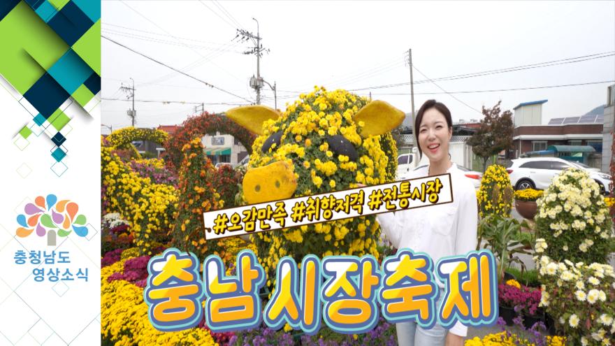 [NEWS]충남 시장 축제  #오감만족 #취향저격 #전통시장