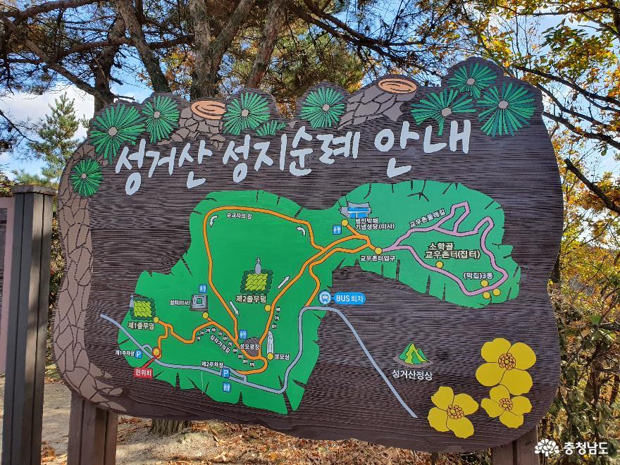 가을빛으로 곱게 물든 천안 성거산 성지둘레길을 걸으며 힐링해요! 5