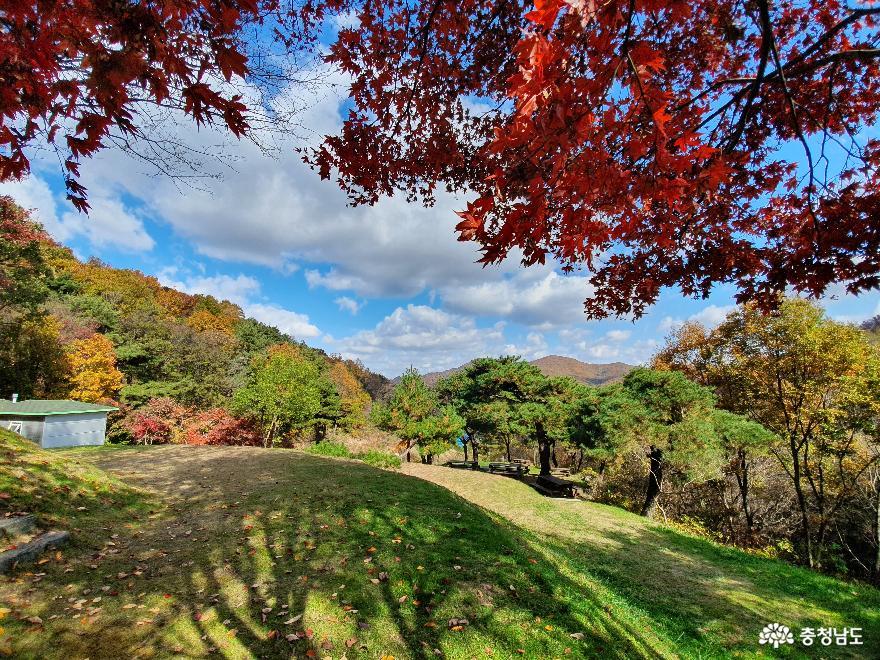 가을빛으로 곱게 물든 천안 성거산 성지둘레길을 걸으며 힐링해요! 16