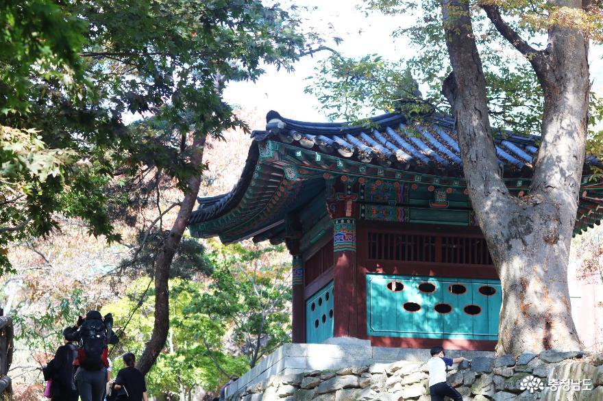 천년고찰 갑사에서 만난 진귀한 보물들과 맑고 깨끗한 자연 풍경 9