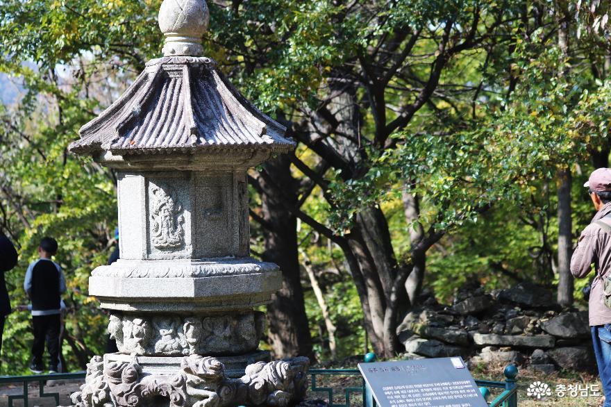천년고찰 갑사에서 만난 진귀한 보물들과 맑고 깨끗한 자연 풍경 12