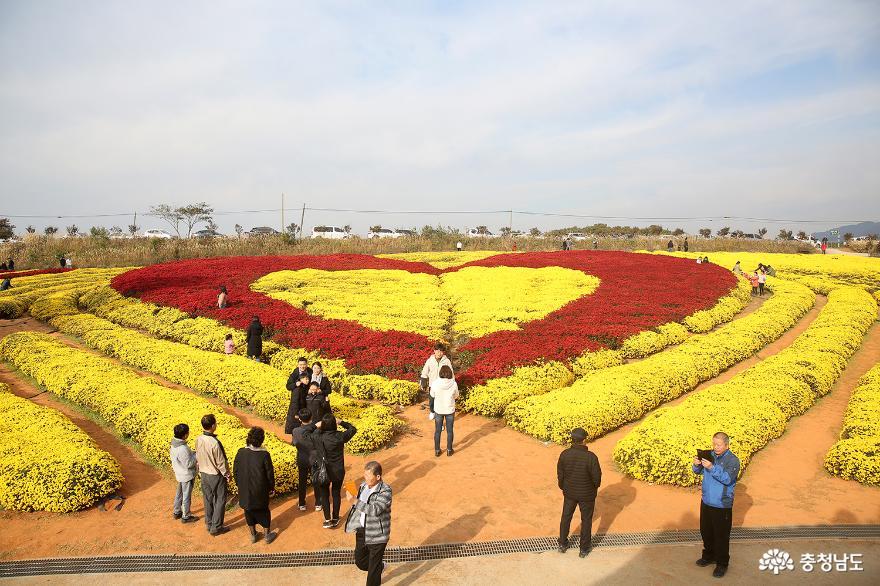 제22회 서산국화축제 '성료', 역대 최다 인원인 20만명 방문해