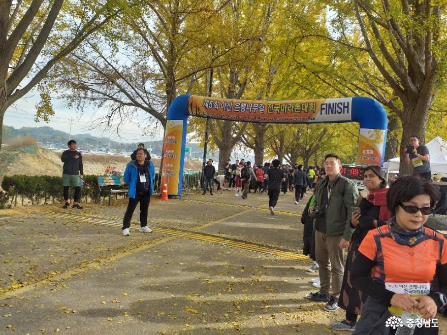 아산은행나무길 마라톤대회