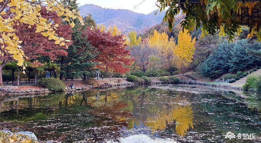 '그래, 가을이야'… 기대 이상의 아름다움과 여유