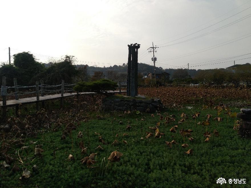체험학습원 꿈꾸는 나무들, 서천식물예술원 9