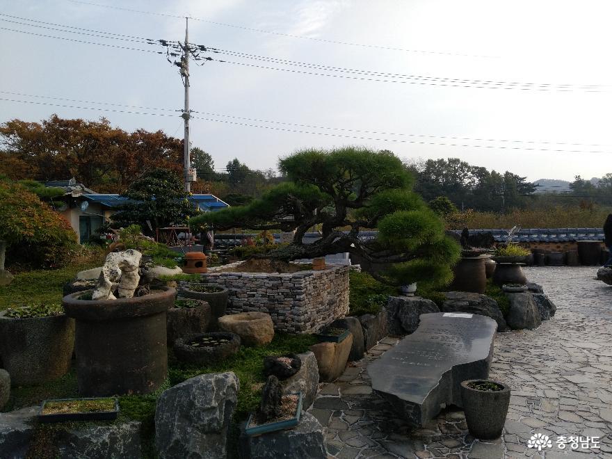 체험학습원 꿈꾸는 나무들, 서천식물예술원 15