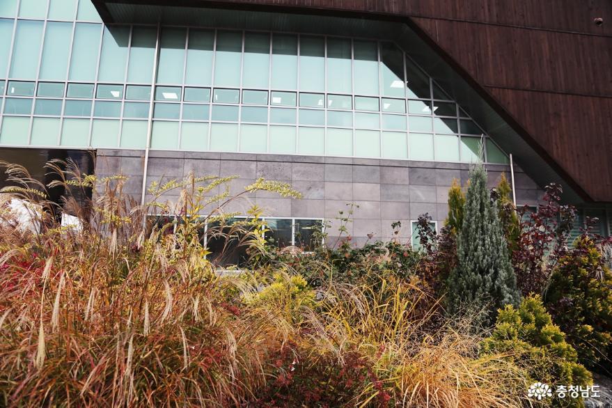 가을에 어울리는 전시와 풍경을 함께 즐길 수 있는 아름다운 천안 신방도서관