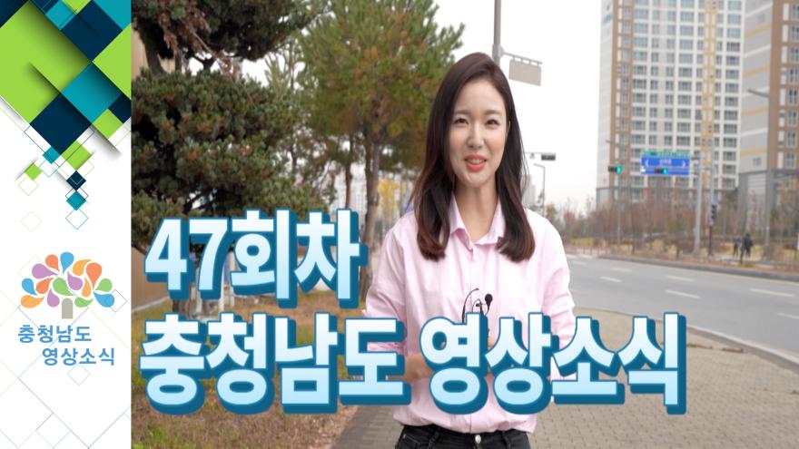 [종합]충청남도 영상소식 47회차